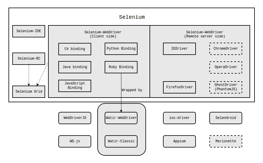 Anatomy of Selenium Project